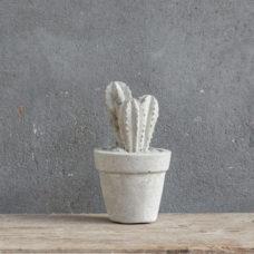 Betonnen cactus 7x7x12cm