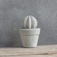 Betonnen cactus 9x9x14cm