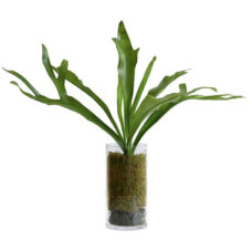 HK Living Staghorn vaas