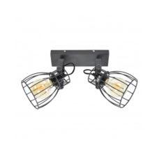 Plafondspot Wire 2-lichts Zwart
