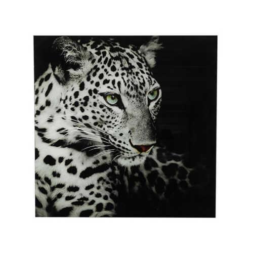 Wandplaat op glas Leopard Wild Life - Zwart/Wit