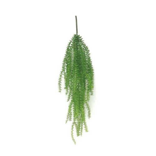 Nepplant - Hang Fiscus aan steel
