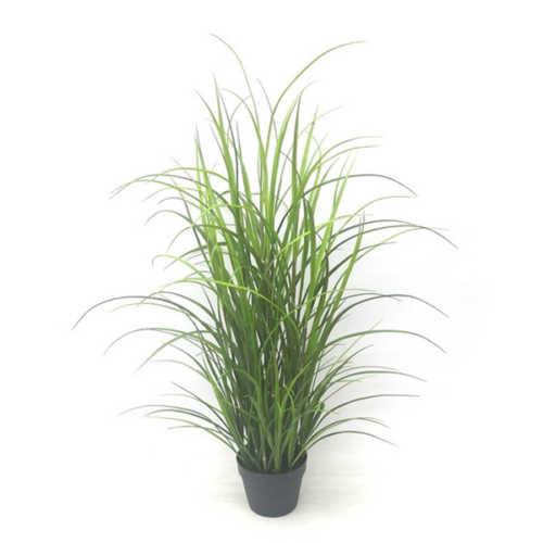 Nepplant - Gras met pot