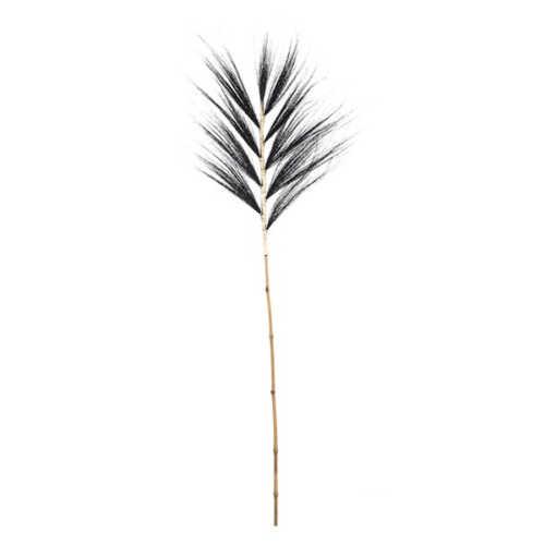 Graan blad pluimen 20x140cm - Zwart