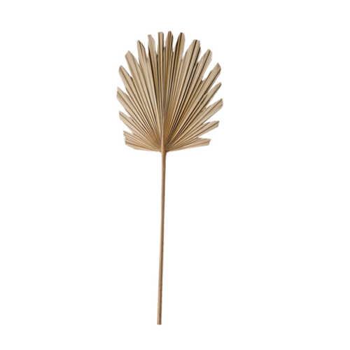 Palmblad PLANTAE 38x96cm - Naturel